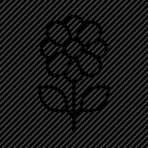 botanical, botanics, flower, flowers, garden, nature, spring icon