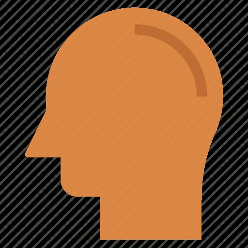 brain, head, human brain, human head, mind, thinking icon