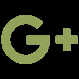 brand, googleplus, logo, social, social network, website icon icon