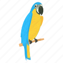 animal, bird, cartoon, exotic, parrot, pet, wing