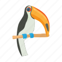 animal, bird, cartoon, exotic, nature, toucan, tropical icon