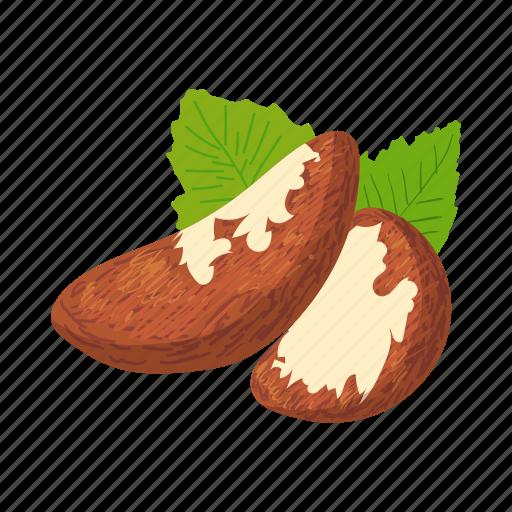 brazil, brazilian, cartoon, healthy, nut, seed, snack icon