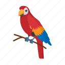 bird, brazil, cartoon, nature, orange, parrot, tropical icon