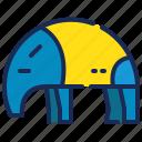 animal, anteater, brazil