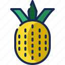 brazil, fruit, pineapple, tropical icon