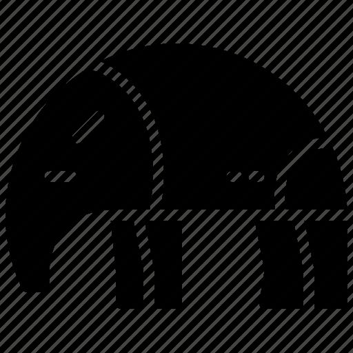 animal, anteater, brazil icon