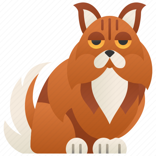 Breed, cat, forest, large, norwegian icon - Download on Iconfinder