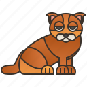 breed, cat, legs, munchkin, short icon