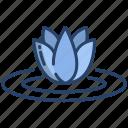 lotus, 1