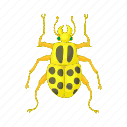 beetle, bug, cartoon, design, fly, insect, pest icon