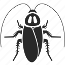 blattaria, carrier, cockroach, contagion, dirty, insect, pest icon