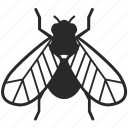 bug, contagion, fly, insect, pest icon