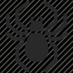 arachnid, bot, poisonous, spider, spider bot, toxic, venomous icon