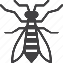 gadfly, horsefly, insect, wasp icon