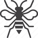 bee, bumblebee, insect, wasp icon