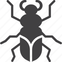 beetle, bug, insect icon
