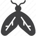insect, mayfly, moth icon