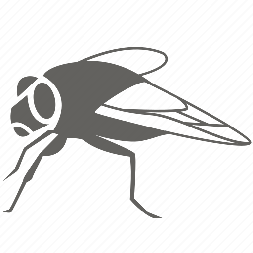 blowfly, bug, flies, fly, house, housefly, insect, pest icon