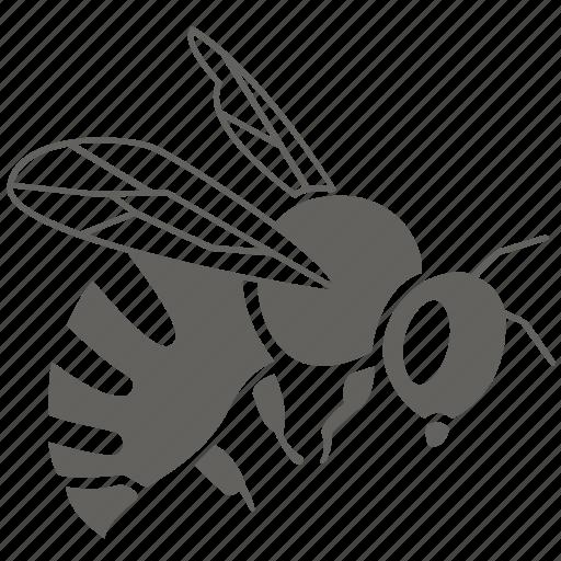 bee, bug, hive, honey, honeybee, hornet, nectar, wasp icon