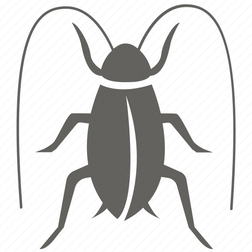 Cockroach, infestation, insect, pest, removal, roach, bug icon - Download on Iconfinder