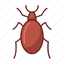bed bug, bug, bugs, insect, insecticide, pest, virus icon