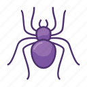 bug, bugs, insect, poisonous, spider, toxic, venomous icon