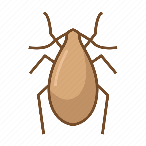 bed bug, bug, bugs, insect, insecticide, virus, viruses icon