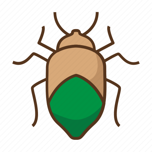 beetle, bug, bugs, insect, insecticide, virus, viruses icon
