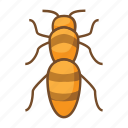 bee, bug, bugs, honey, insect, insecticide, sting icon