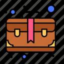 bag, brief, business, case