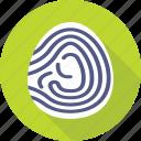 biometric, fingerprint, identification, investigation, thumbprint