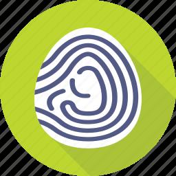 biometric, fingerprint, identification, investigation, thumbprint icon