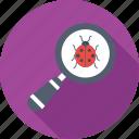 bug, find bug, find error, search, search bug