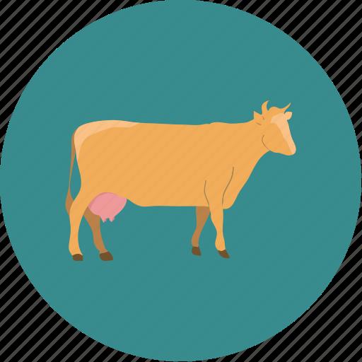 agriculture, agronomy, cow, farm, farming icon