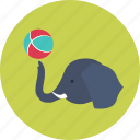 circus, elephant, entertainment, focus, trick icon