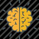 brain, brain diagram, brain performance, brain structure, human brain icon icon