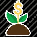 ecology, green, money plant, plant