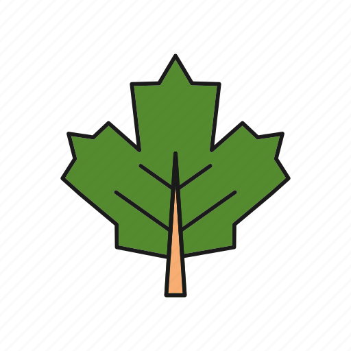 environment, green, leaf, nature icon