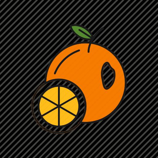 Citrus, food, fruit, orange icon - Download on Iconfinder