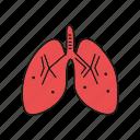 anatomy, failure, hospital, kidney