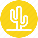cactus, desert, eco, flowerpot, nature, plant, pot icon