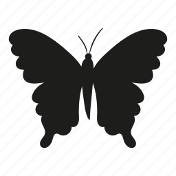 animal, bug, butterfly, flying, insect, nature icon