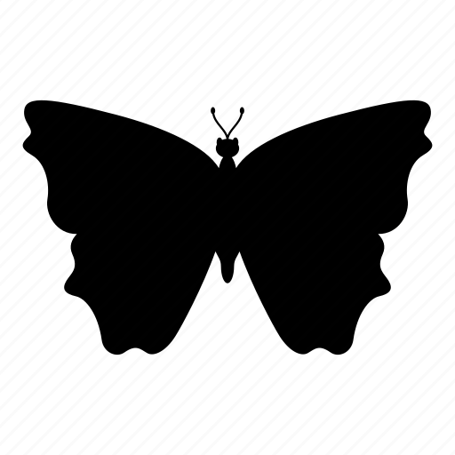 animal, butterfly, flying, insect, nature icon