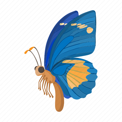 beauty, butterfly, cartoon, insect, nature, sign, style icon