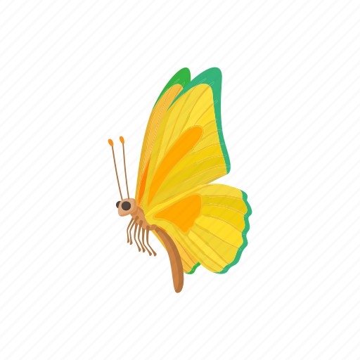 beauty, butterfly, cartoon, insect, nature, sign, wing icon