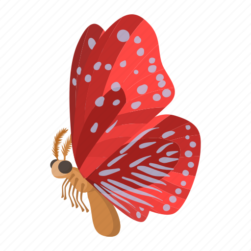 beauty, butterfly, cartoon, fly, insect, nature, sign icon