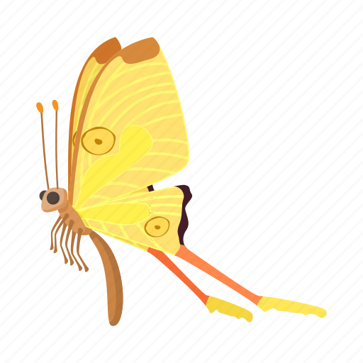 butterfly, cartoon, insect, nature, orange, sign, style icon