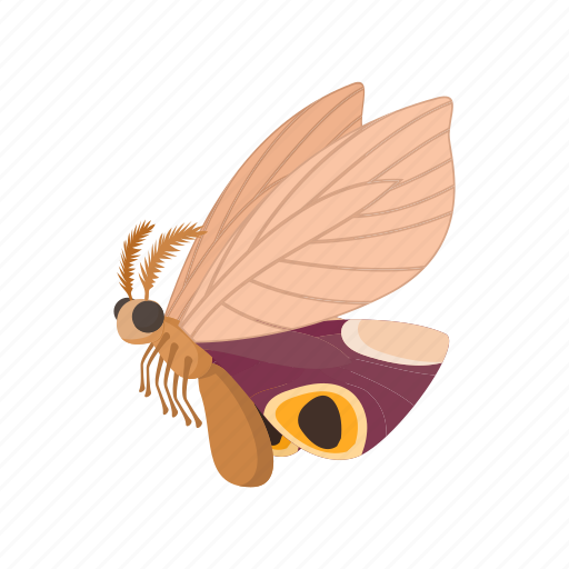 brown, butterfly, cartoon, insect, light, nature, sign icon