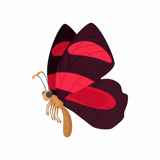 burgundy, butterfly, cartoon, insect, nature, sign, style icon