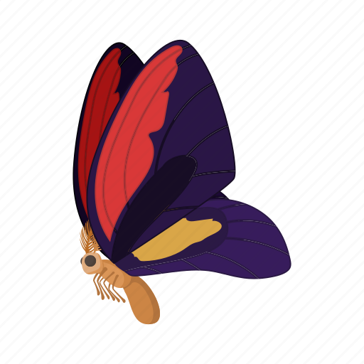 beauty, butterfly, cartoon, insect, nature, purple, wing icon
